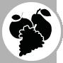 Picto-Fruits
